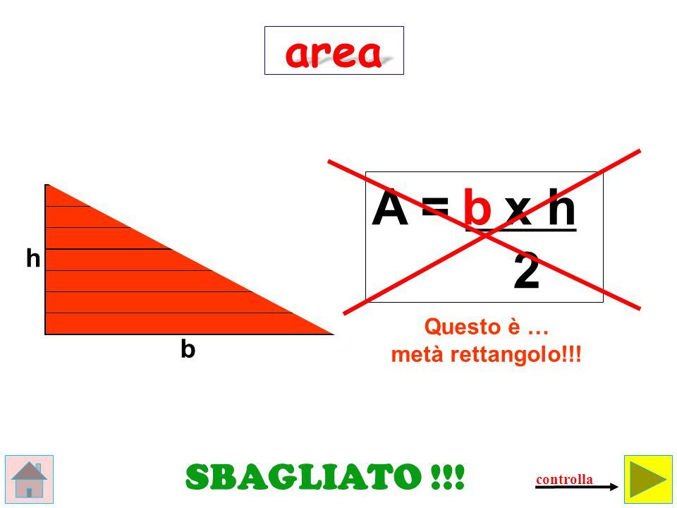 Questo è … metà rettangolo!!!