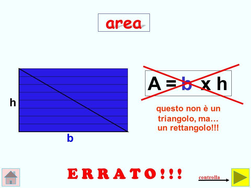 questo non è un triangolo, ma… un rettangolo!!!