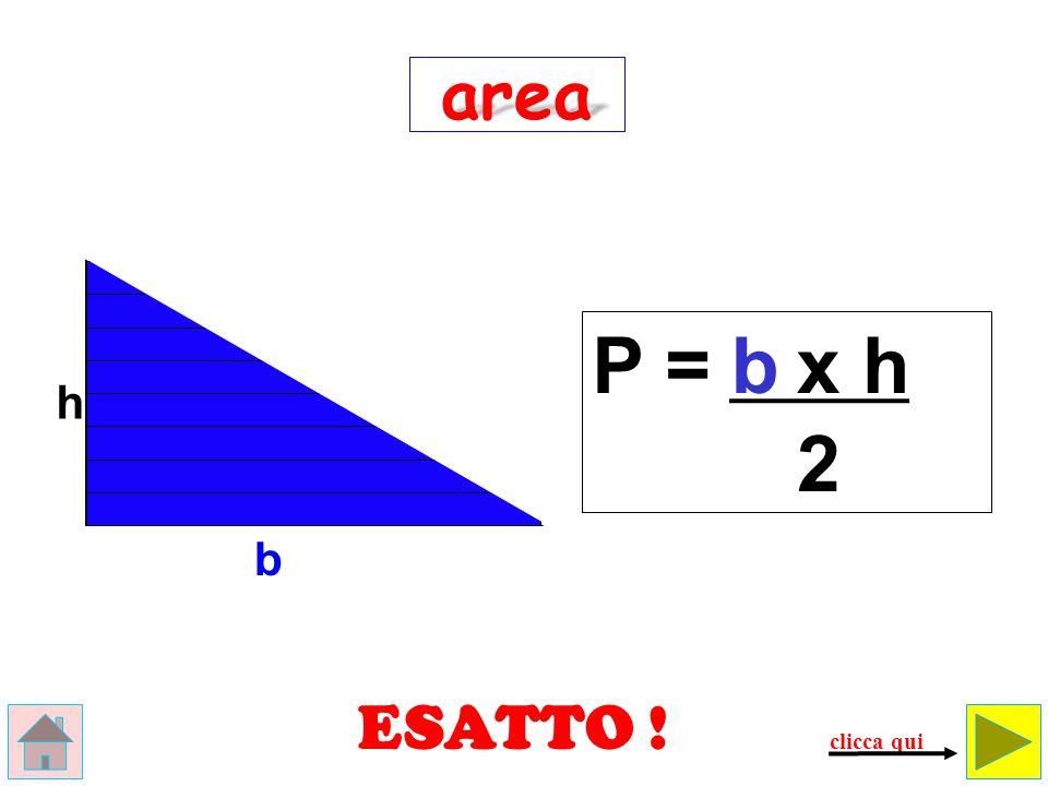 area P = b x h h 2 b ESATTO ! clicca qui