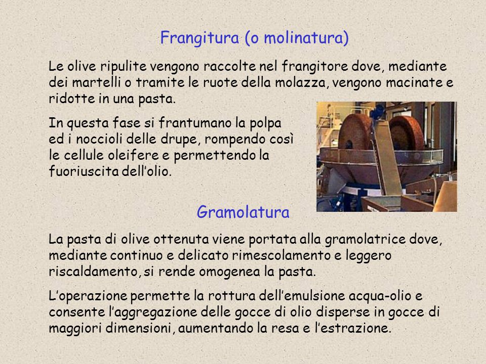 Frangitura (o molinatura)