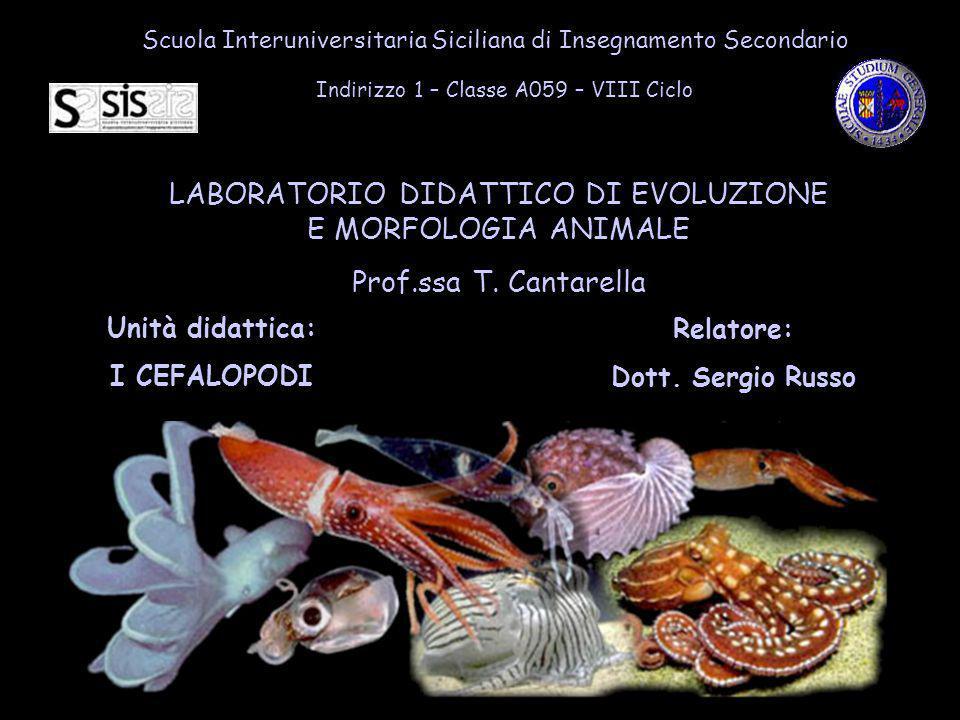 LABORATORIO DIDATTICO DI EVOLUZIONE E MORFOLOGIA ANIMALE