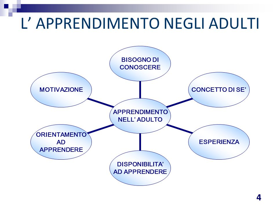 L' APPRENDIMENTO NEGLI ADULTI