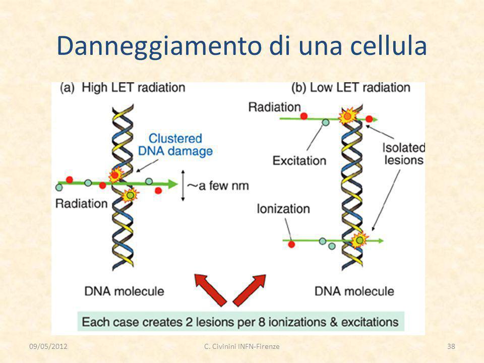 Danneggiamento di una cellula