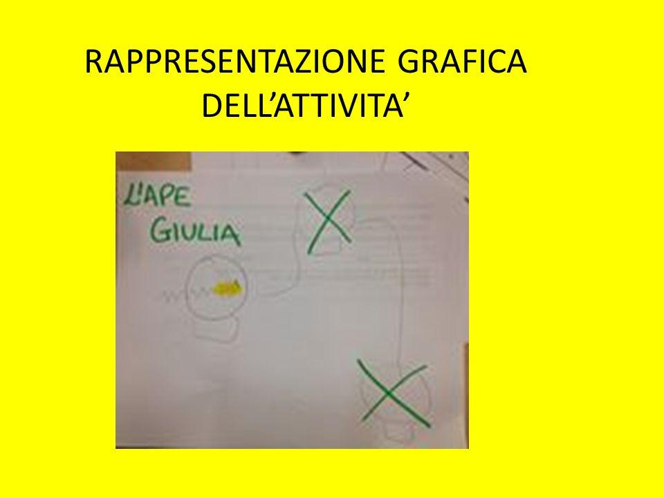 RAPPRESENTAZIONE GRAFICA DELL'ATTIVITA'