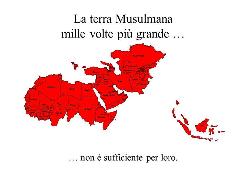 La terra Musulmana mille volte più grande …