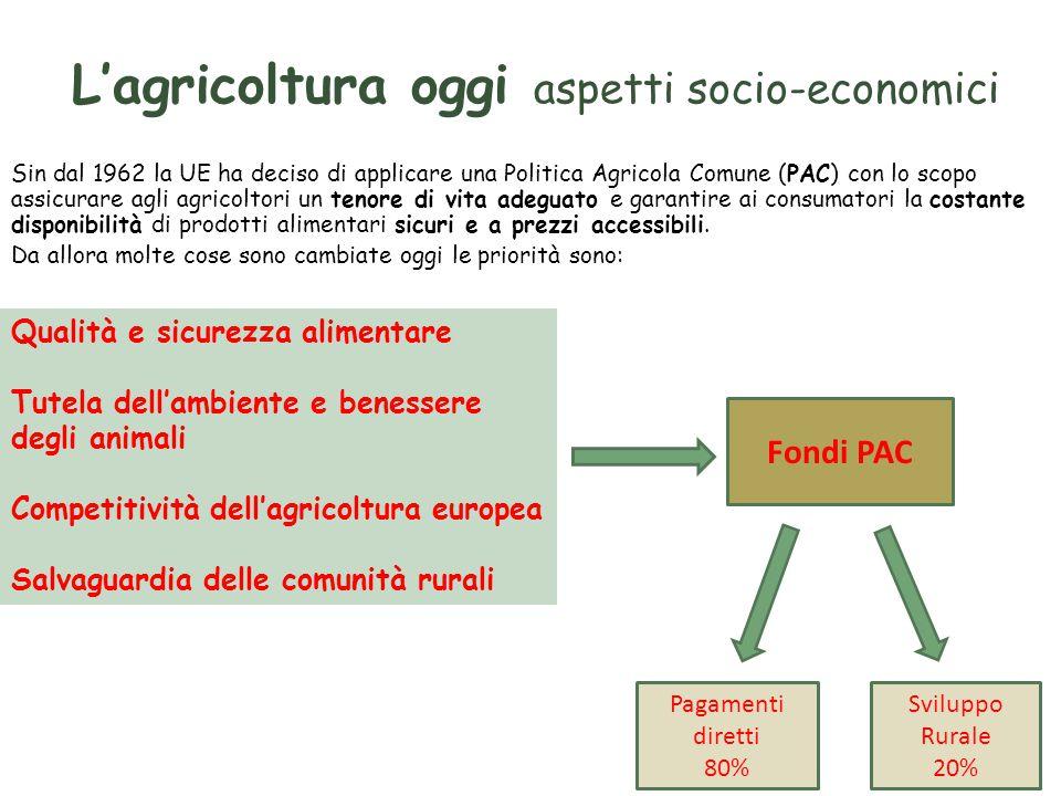 L'agricoltura oggi aspetti socio-economici