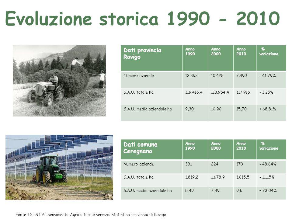 Evoluzione storica 1990 - 2010 Dati provincia Rovigo