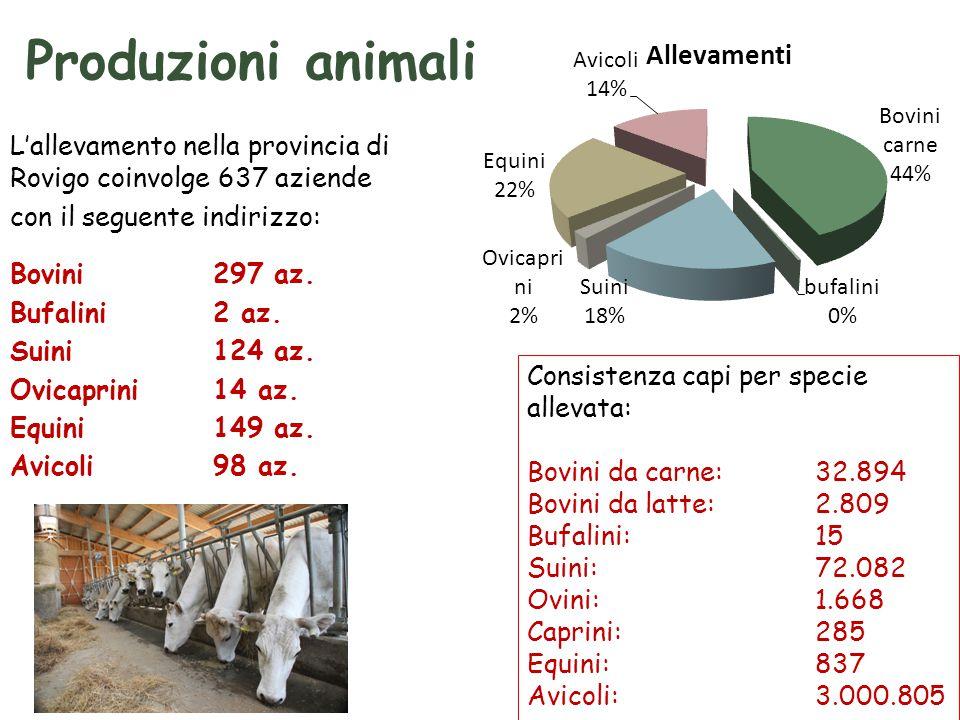 Produzioni animali