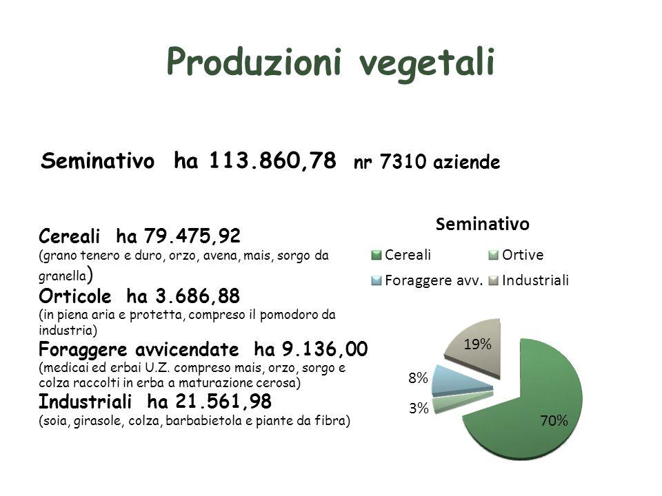 Produzioni vegetali Seminativo ha 113.860,78 nr 7310 aziende
