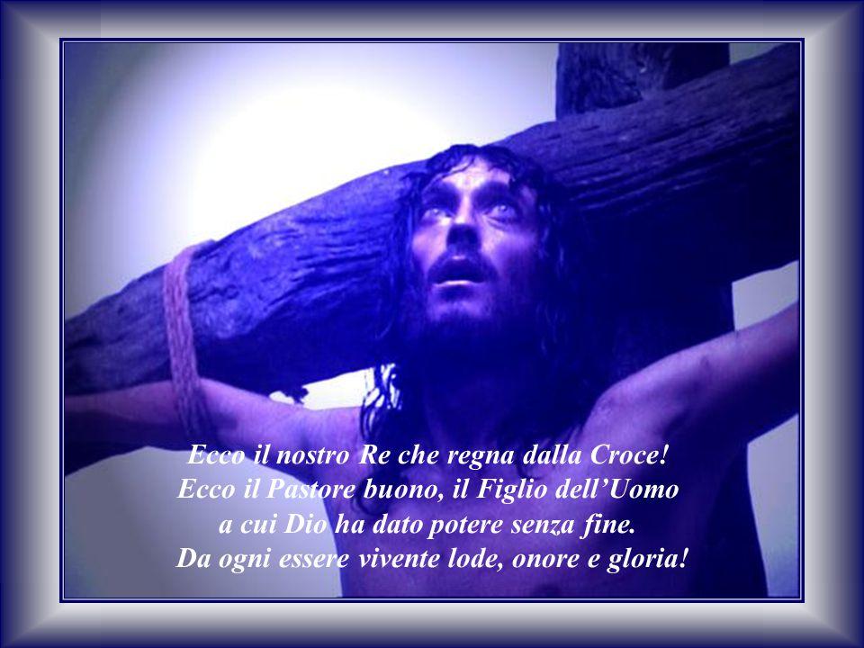Ecco il nostro Re che regna dalla Croce!