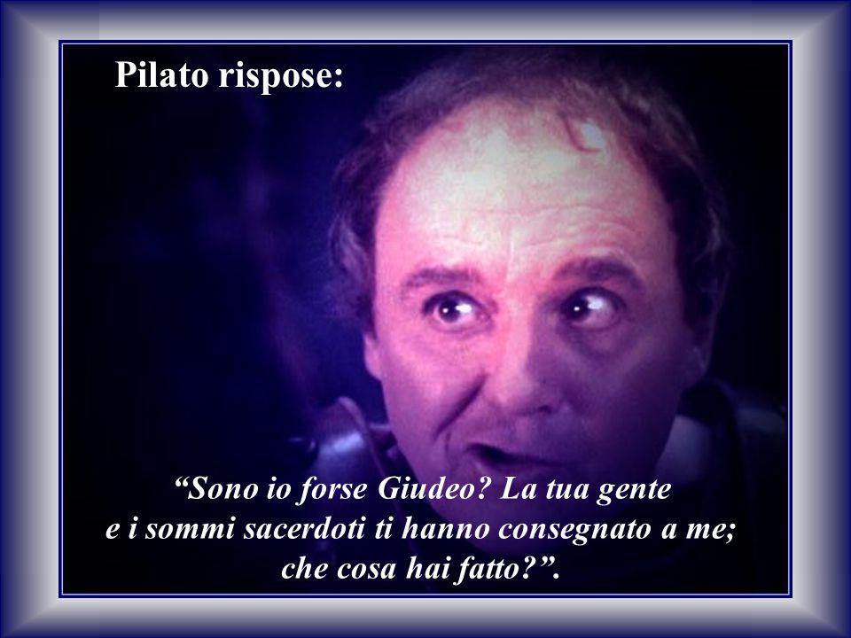 Pilato rispose: Sono io forse Giudeo La tua gente