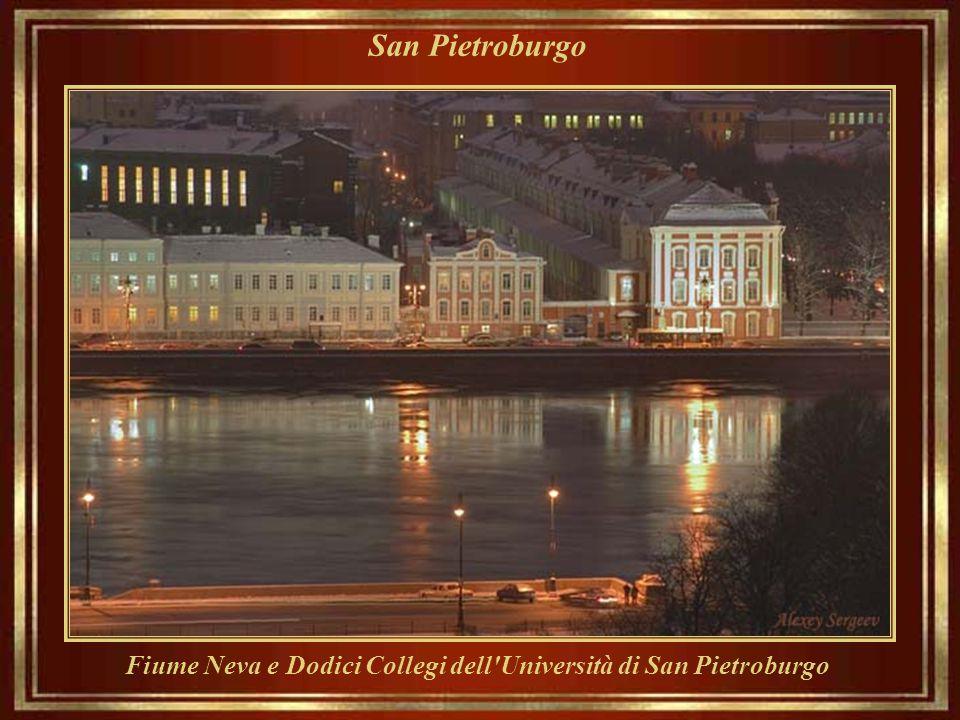 Fiume Neva e Dodici Collegi dell Università di San Pietroburgo