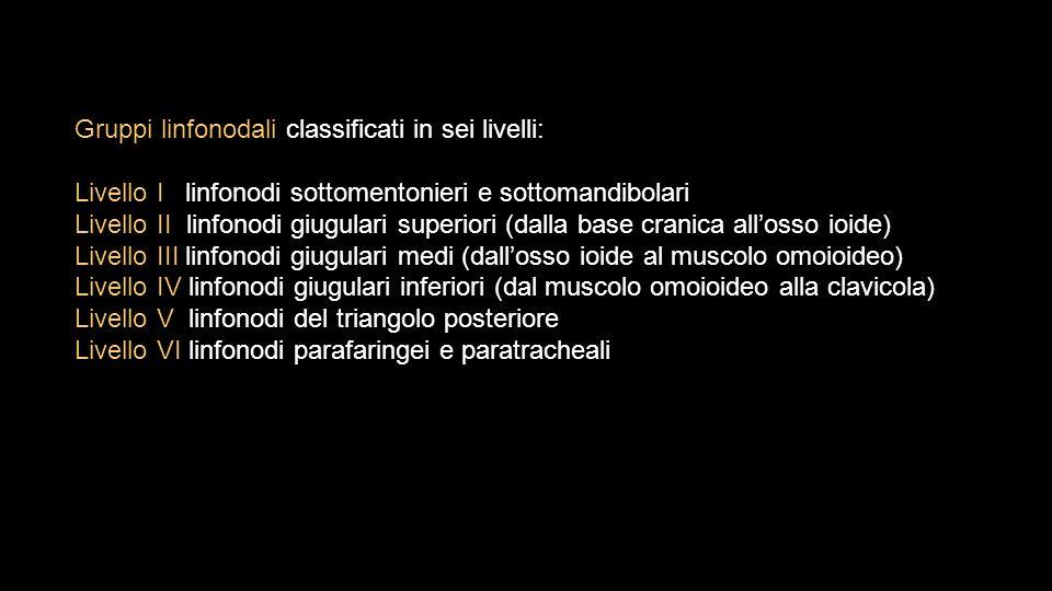 Gruppi linfonodali classificati in sei livelli: