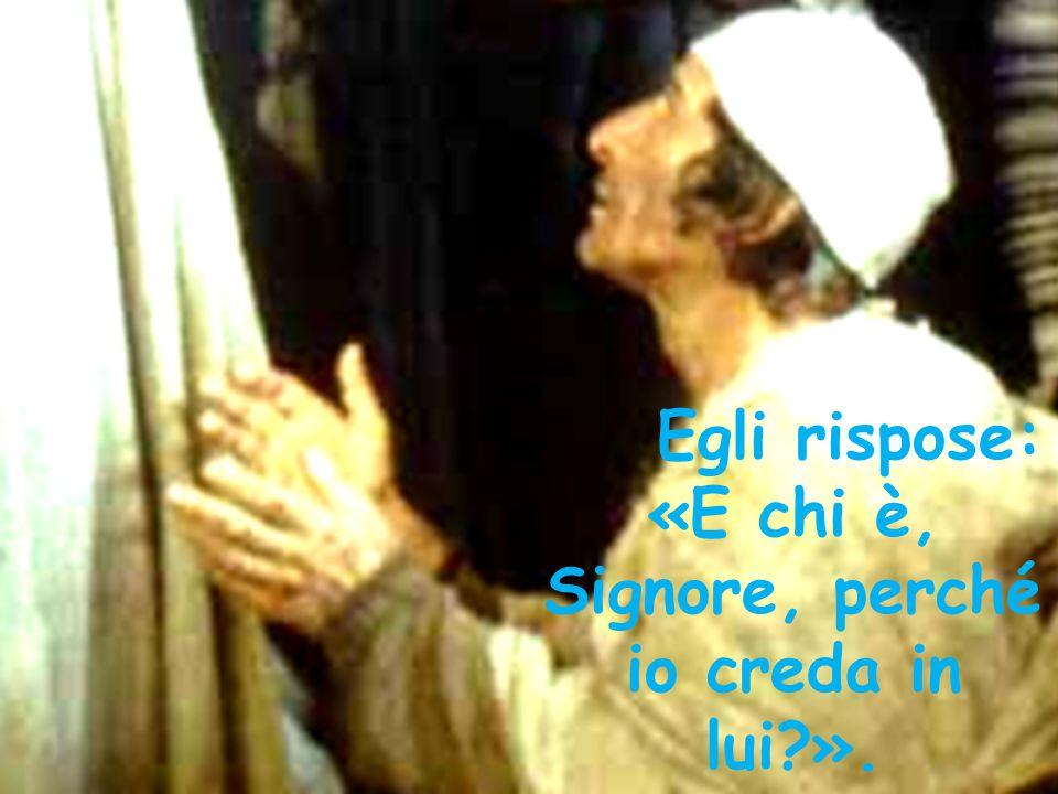 «E chi è, Signore, perché io creda in lui ».