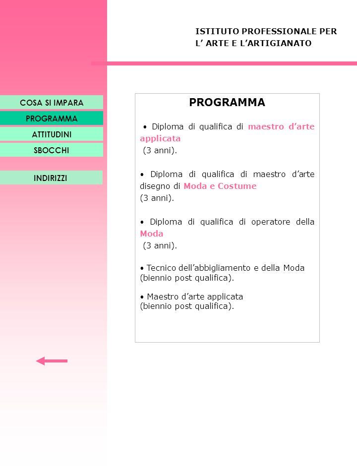 PROGRAMMA ISTITUTO PROFESSIONALE PER L' ARTE E L'ARTIGIANATO
