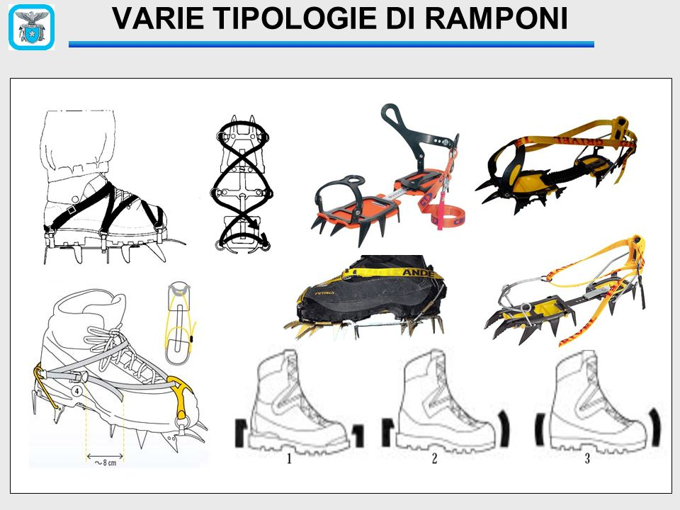VARIE TIPOLOGIE DI RAMPONI