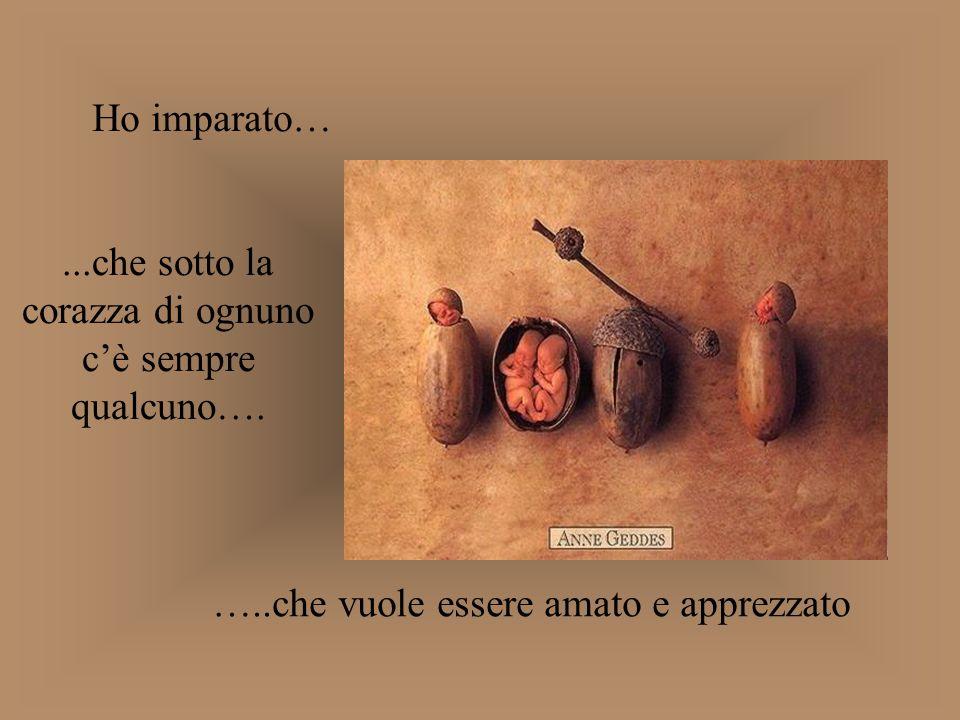 ...che sotto la corazza di ognuno c'è sempre qualcuno….