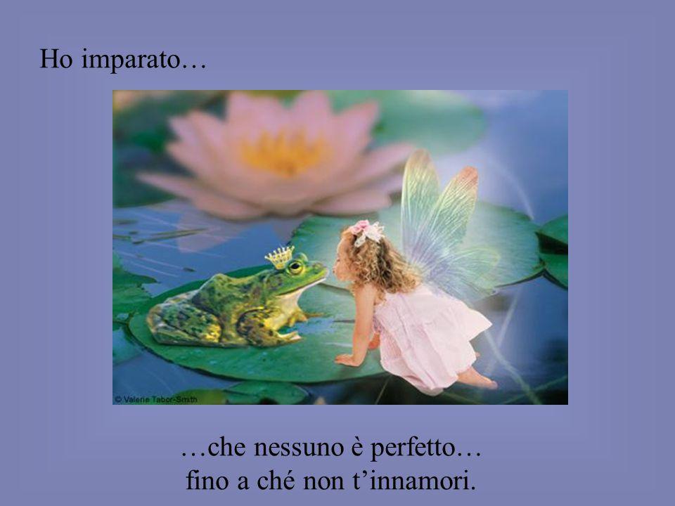 …che nessuno è perfetto… fino a ché non t'innamori.