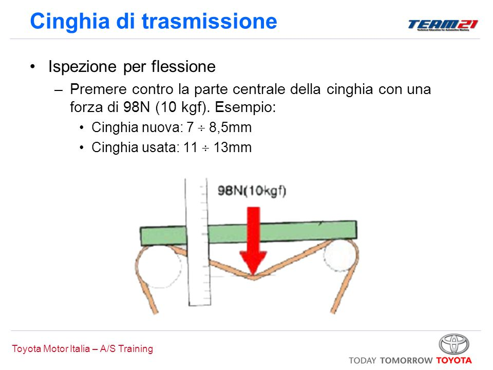 Cinghia di trasmissione
