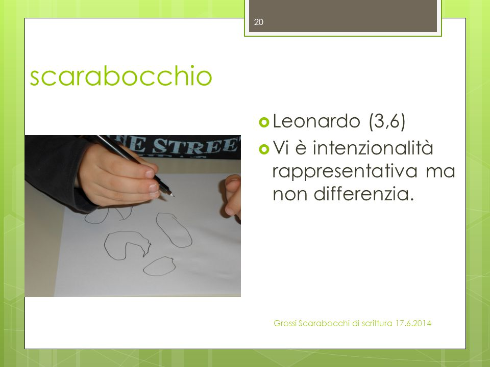 scarabocchio Leonardo (3,6)