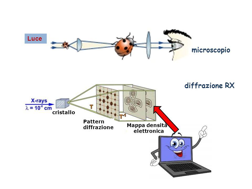 microscopio diffrazione RX Luce cristallo Pattern diffrazione