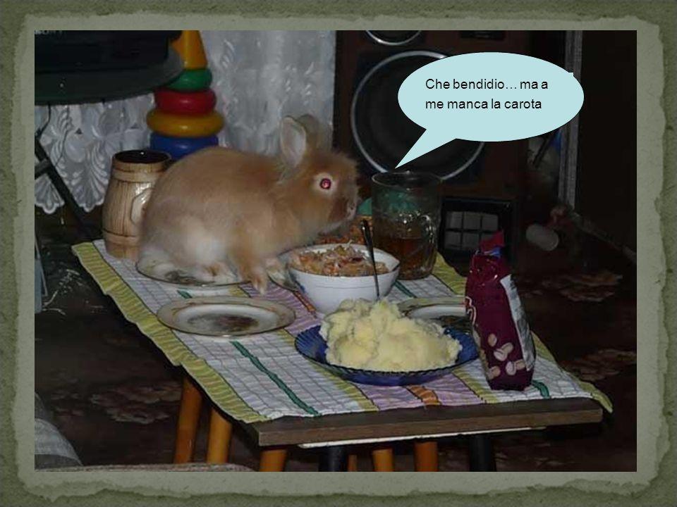 Che bendidio… ma a me manca la carota