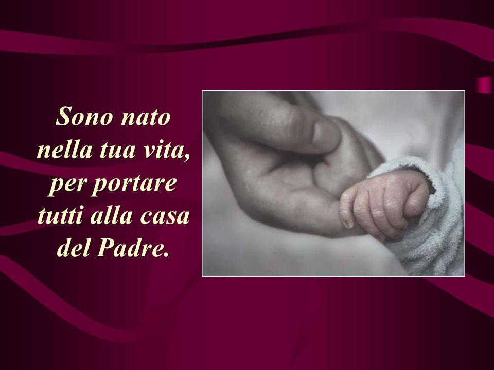 Sono nato nella tua vita, per portare tutti alla casa del Padre.