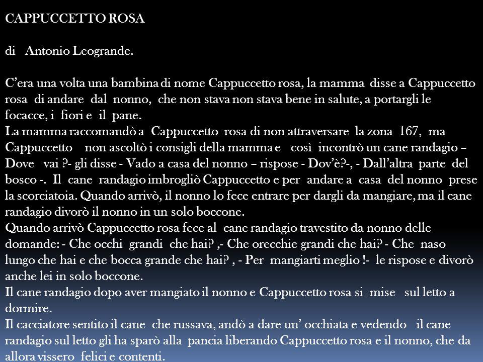 CAPPUCCETTO ROSA di Antonio Leogrande.