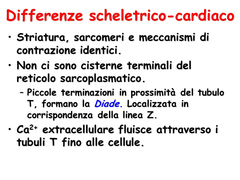 Differenze scheletrico-cardiaco