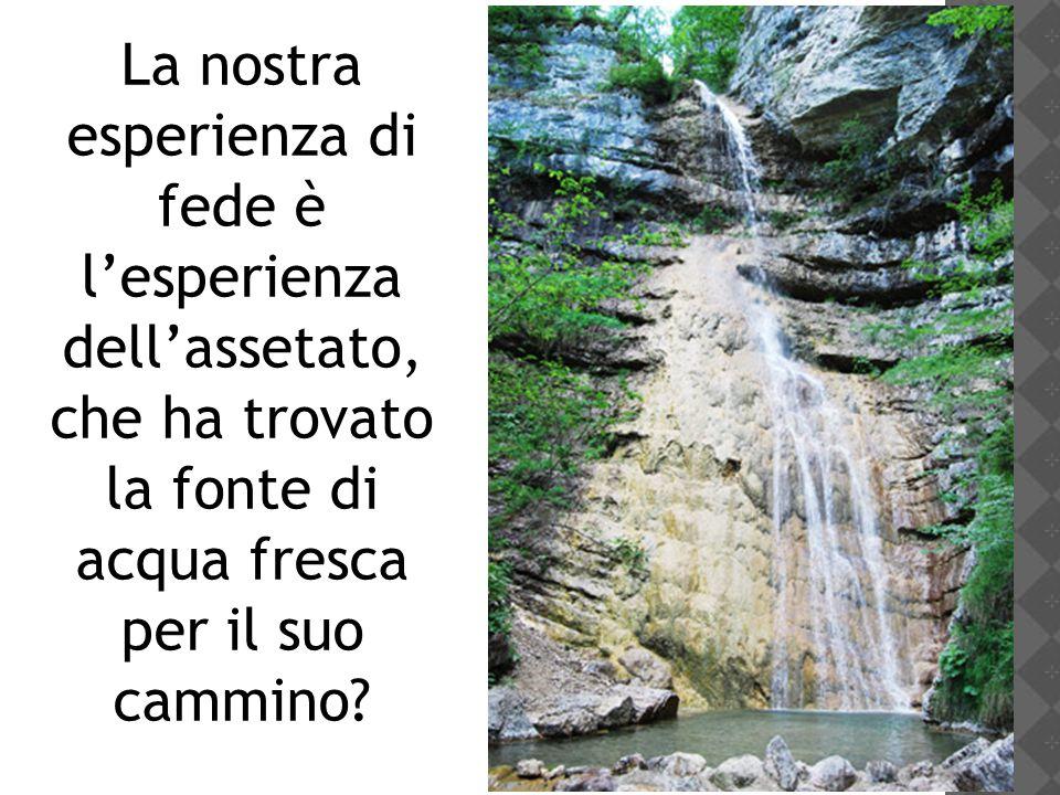 La nostra esperienza di fede è l'esperienza dell'assetato, che ha trovato la fonte di acqua fresca per il suo cammino