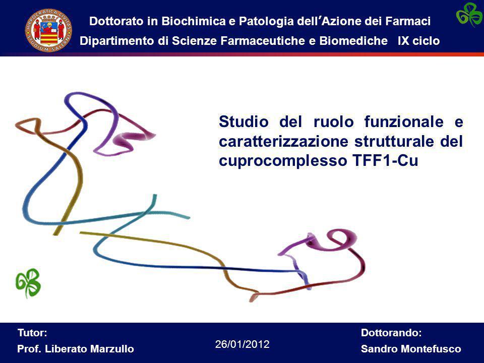 Dottorato in Biochimica e Patologia dell'Azione dei Farmaci