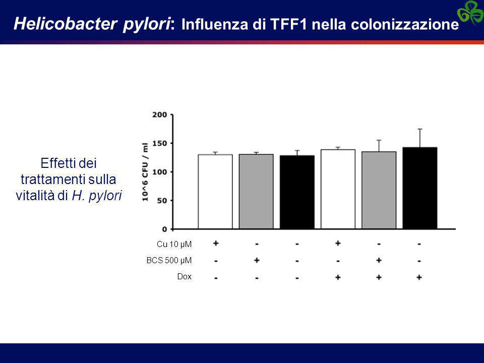 Effetti dei trattamenti sulla vitalità di H. pylori
