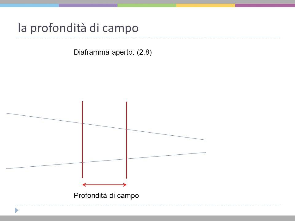 la profondità di campo Diaframma aperto: (2.8) Profondità di campo