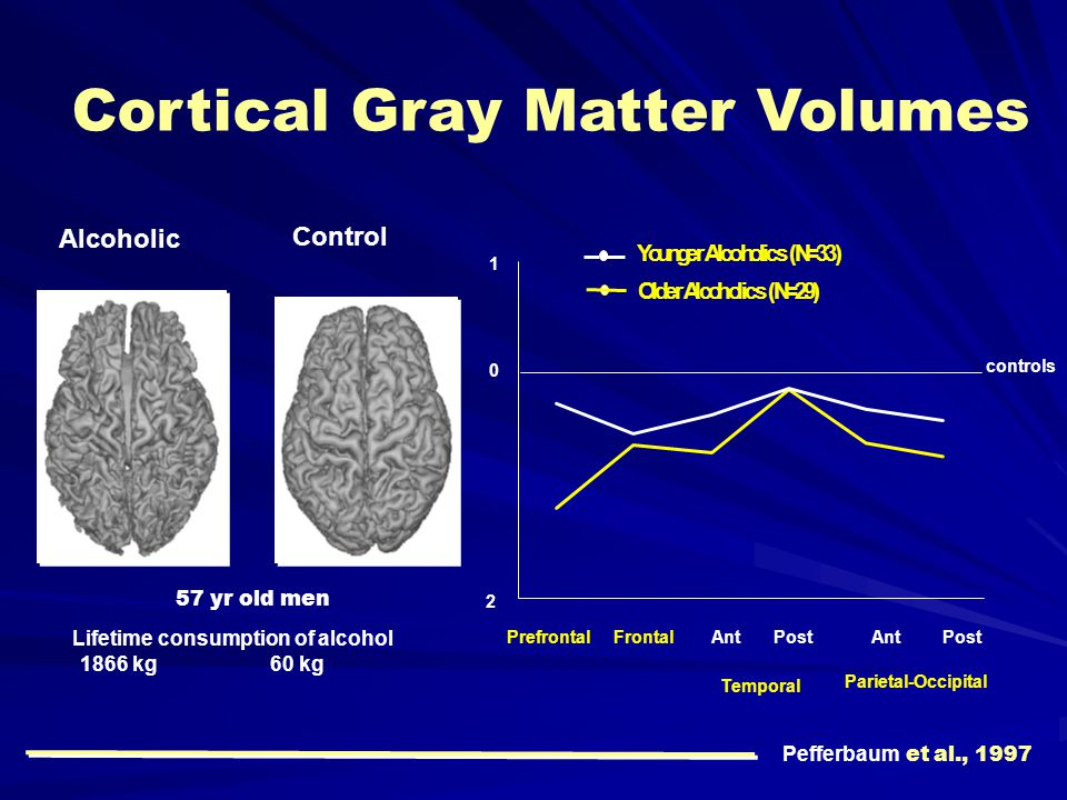 Cortical Gray Matter Volumes