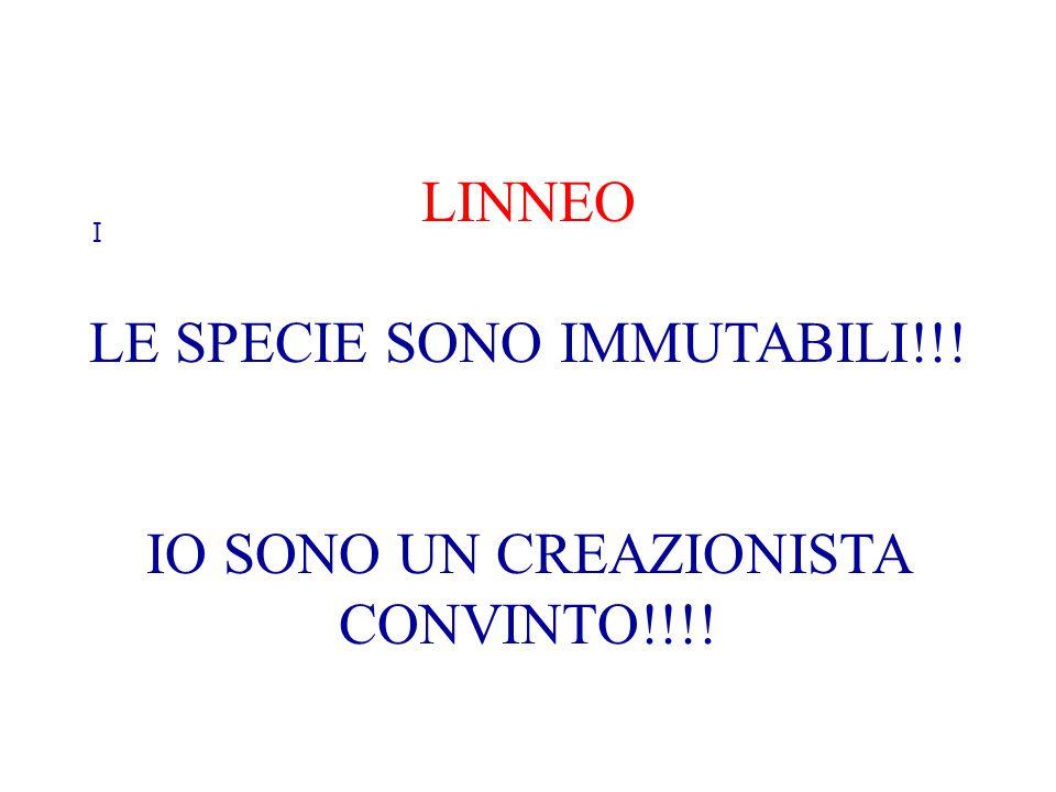 LE SPECIE SONO IMMUTABILI!!!