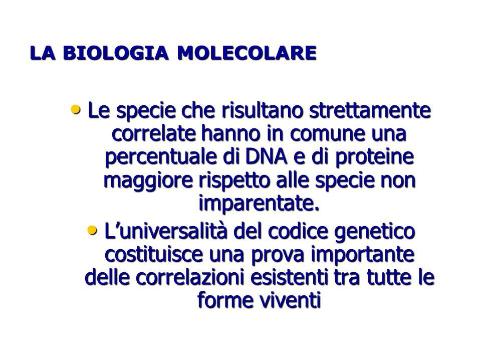 LA BIOLOGIA MOLECOLARE