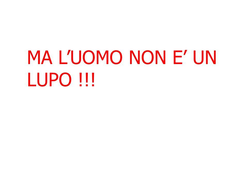 MA L'UOMO NON E' UN LUPO !!!