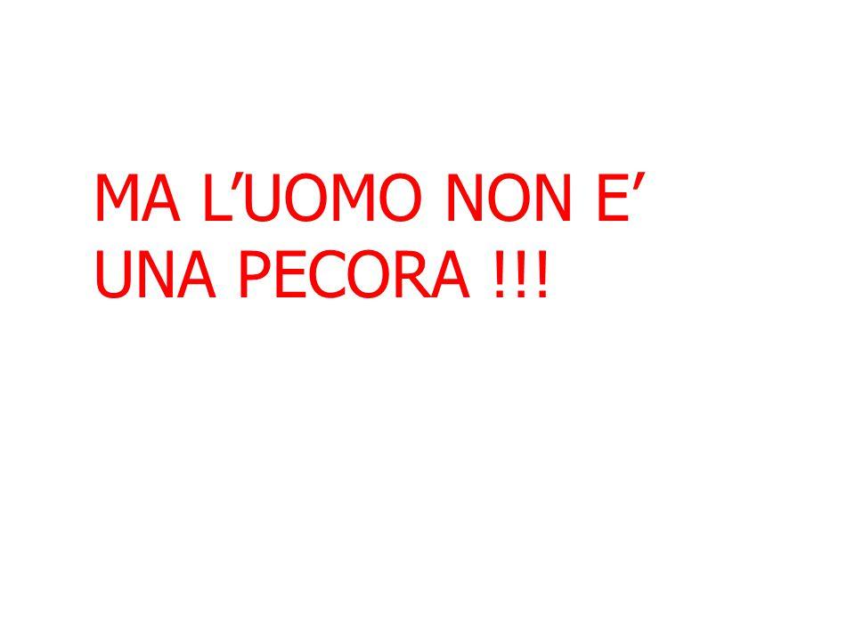 MA L'UOMO NON E' UNA PECORA !!!