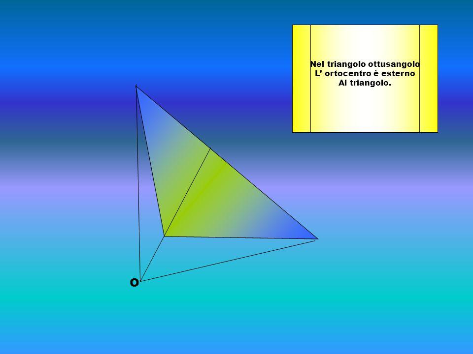 Nel triangolo ottusangolo