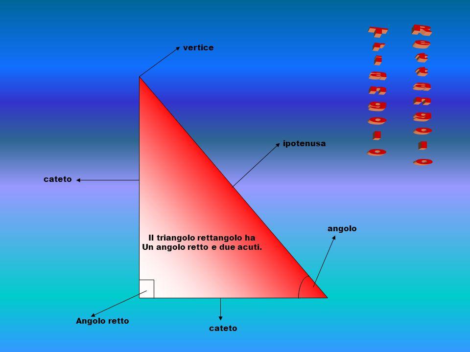 Triangolo Rettangolo vertice ipotenusa Il triangolo rettangolo ha
