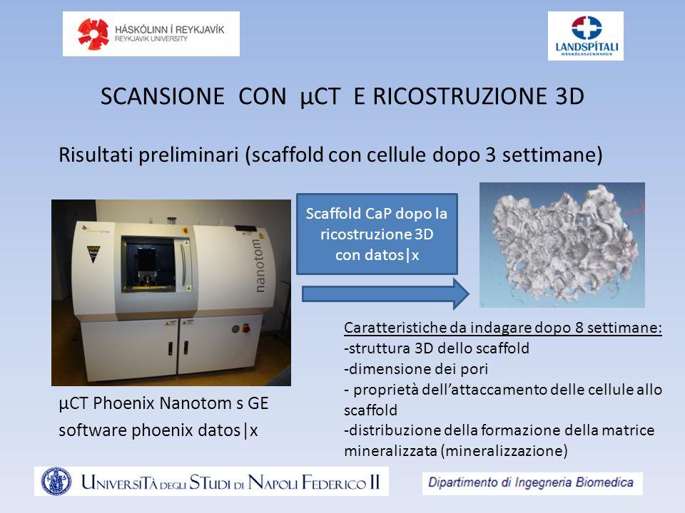 SCANSIONE CON µCT E RICOSTRUZIONE 3D