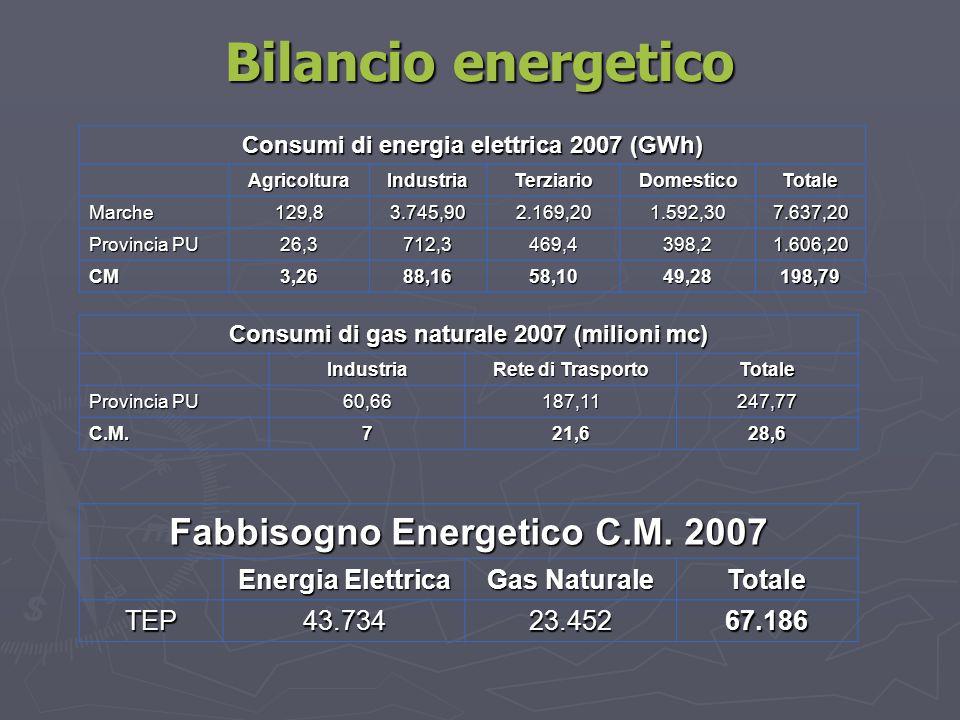 Bilancio energetico Fabbisogno Energetico C.M. 2007 Energia Elettrica