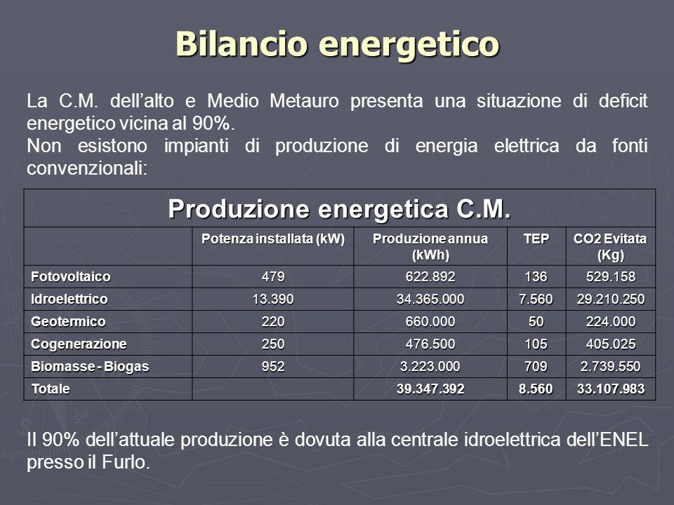 Bilancio energetico Produzione energetica C.M.