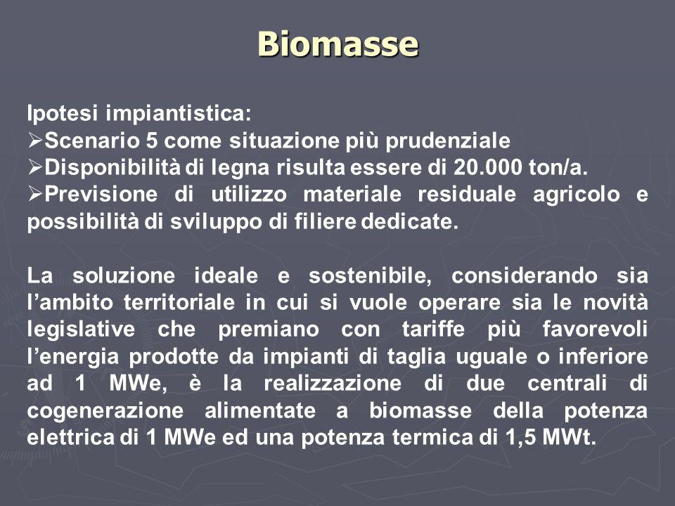 Biomasse Ipotesi impiantistica: