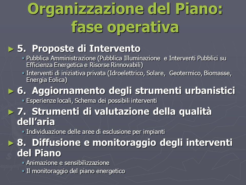 Organizzazione del Piano: fase operativa