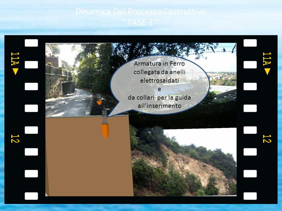 Dinamica Del Processo Costruttivo FASE 3°