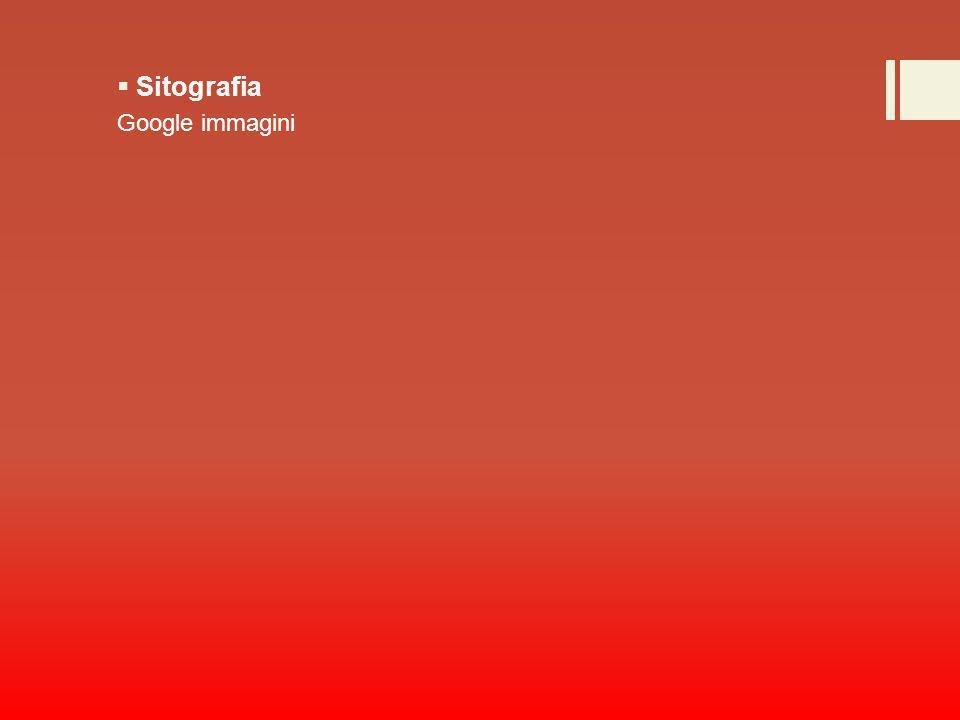 Sitografia Google immagini
