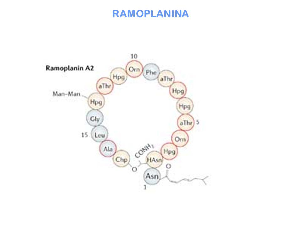 RAMOPLANINA