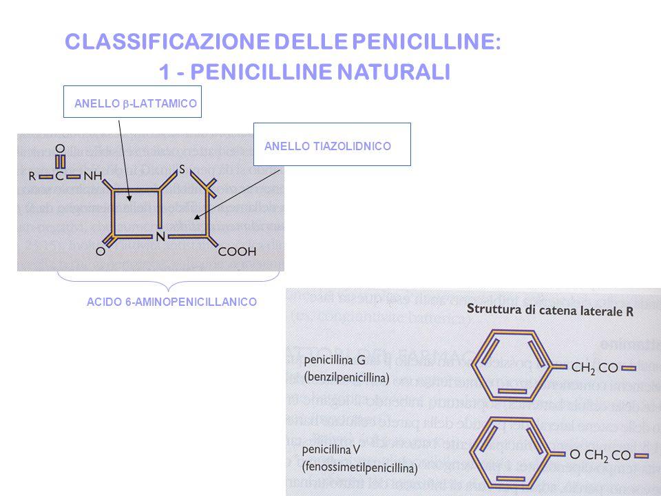 CLASSIFICAZIONE DELLE PENICILLINE: 1 - PENICILLINE NATURALI