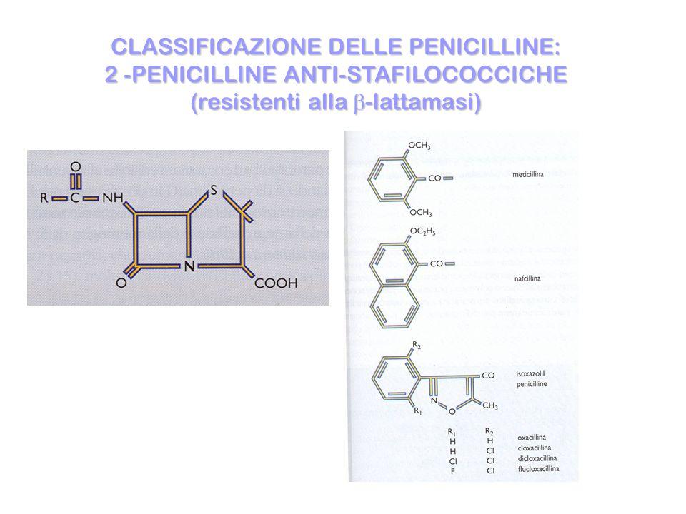 CLASSIFICAZIONE DELLE PENICILLINE: 2 -PENICILLINE ANTI-STAFILOCOCCICHE